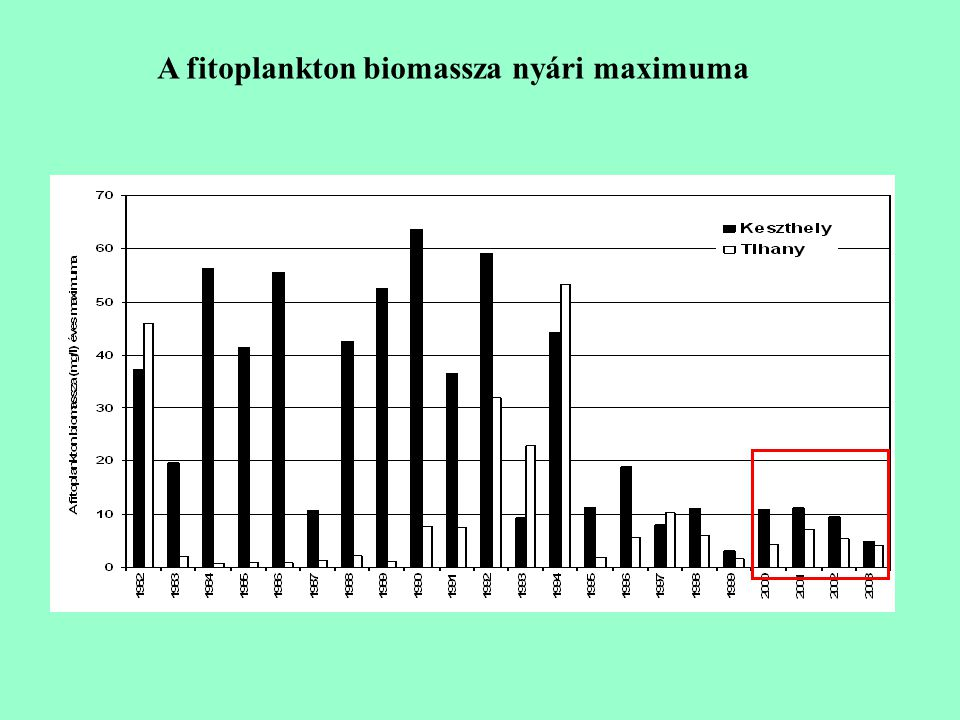 A fitoplankton biomassza nyári maximuma