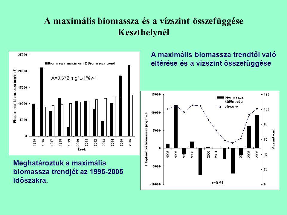 A maximális biomassza és a vízszint összefüggése Keszthelynél