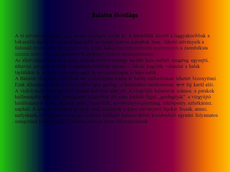 Balaton élővilága