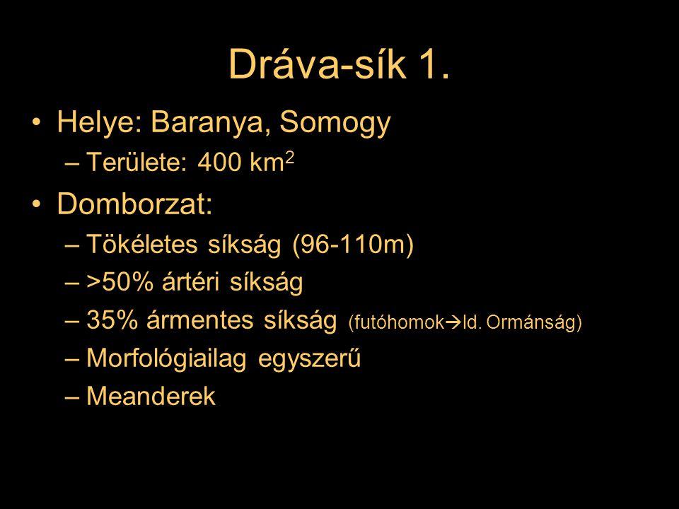 Dráva-sík 1. Helye: Baranya, Somogy Domborzat: Területe: 400 km2