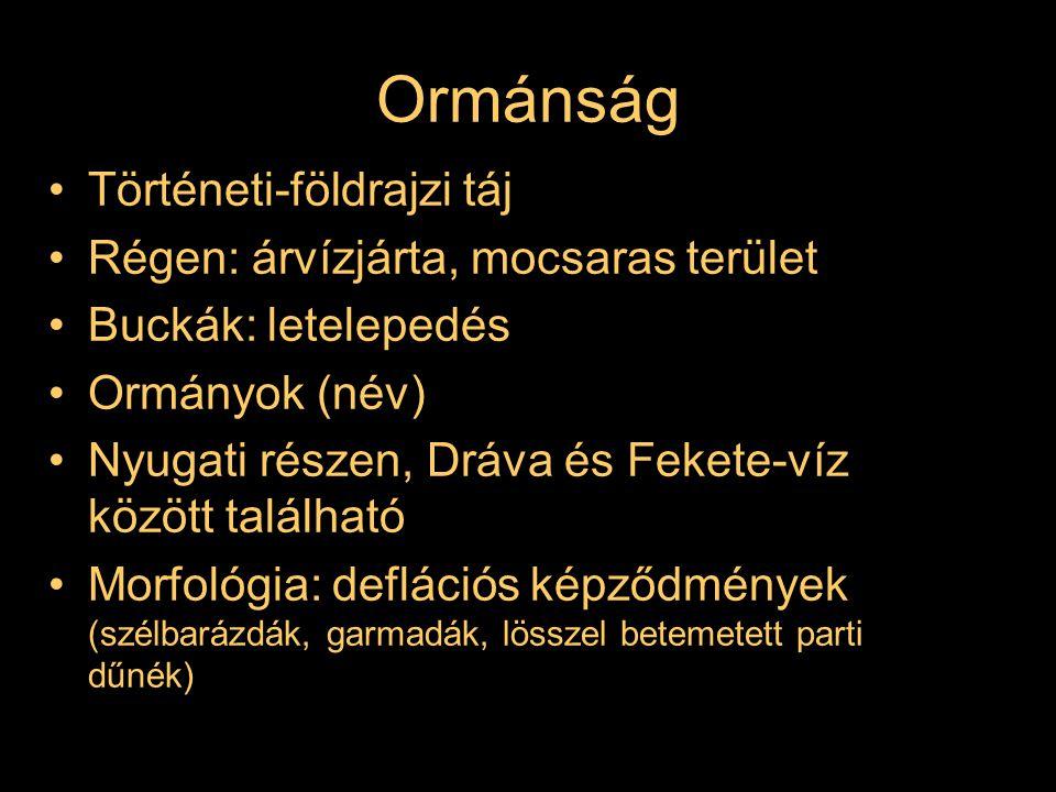 Ormánság Történeti-földrajzi táj Régen: árvízjárta, mocsaras terület