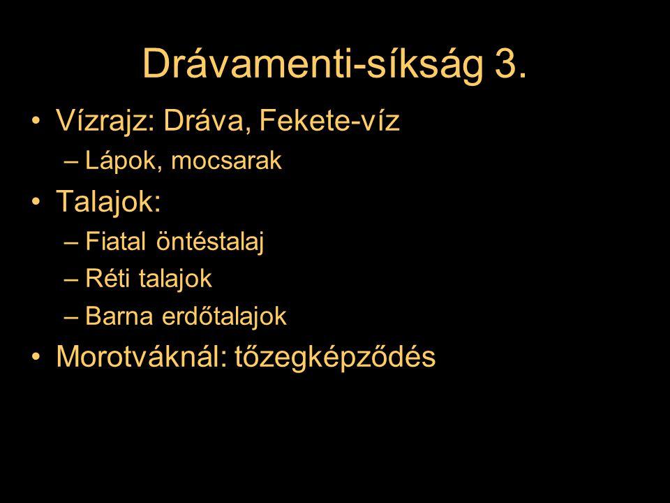 Drávamenti-síkság 3. Vízrajz: Dráva, Fekete-víz Talajok: