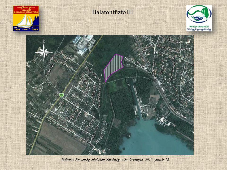 Balatonfűzfő III. Balatoni Szövetség kibővített elnökségi ülés Örvényes, 2015. január 28.