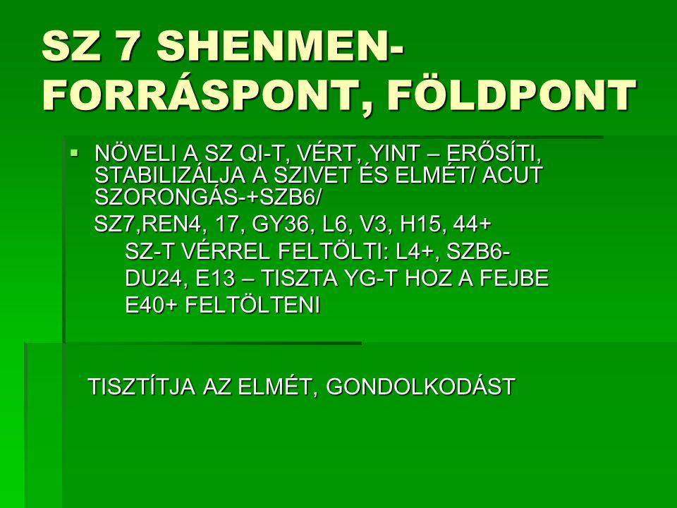 SZ 7 SHENMEN- FORRÁSPONT, FÖLDPONT