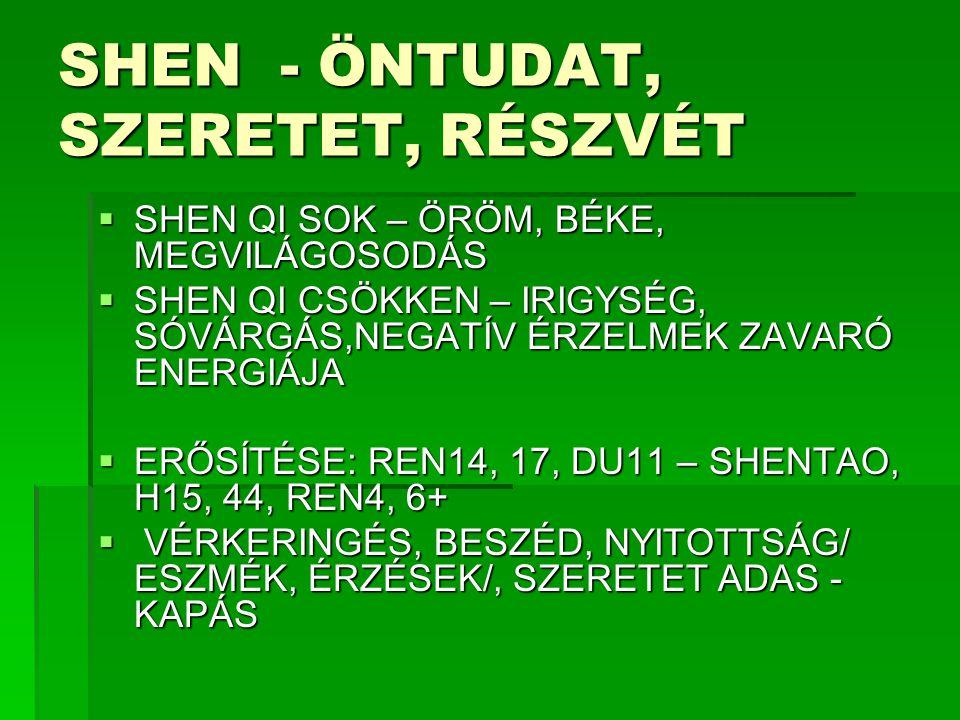 SHEN - ÖNTUDAT, SZERETET, RÉSZVÉT