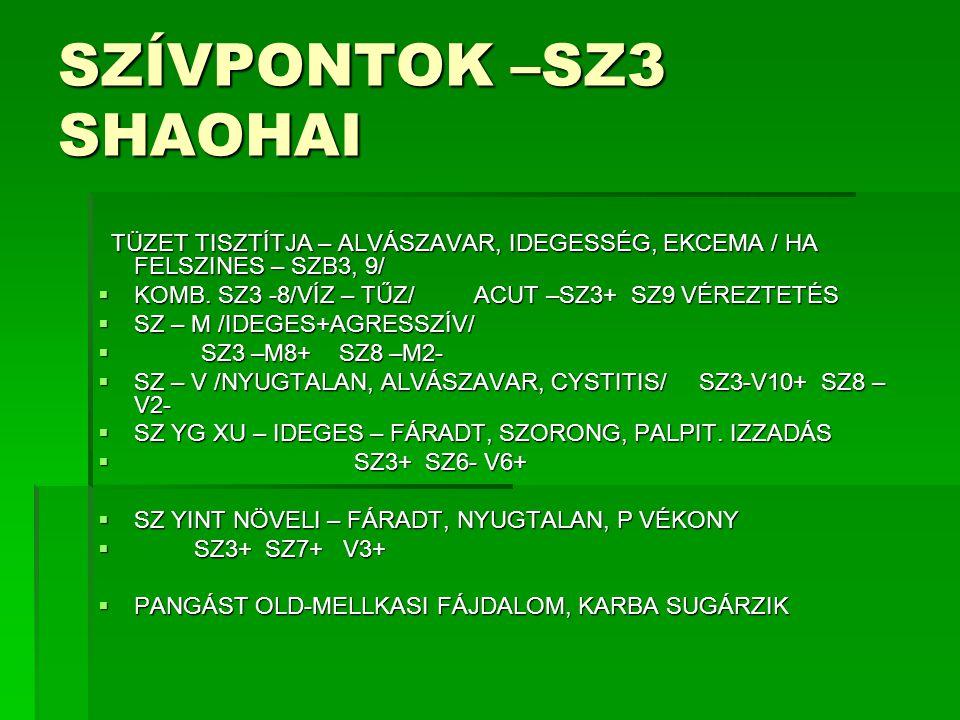 SZÍVPONTOK –SZ3 SHAOHAI