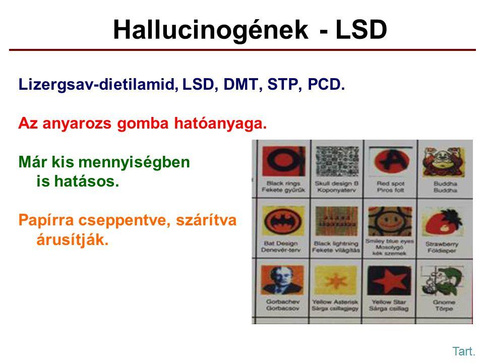 Hallucinogének - LSD Lizergsav-dietilamid, LSD, DMT, STP, PCD.