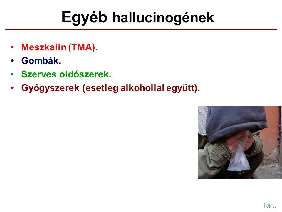 Egyéb hallucinogének Meszkalin (TMA). Gombák. Szerves oldószerek.