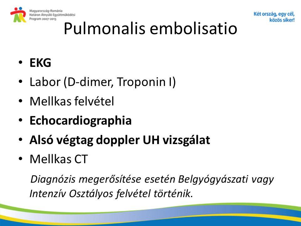 Pulmonalis embolisatio
