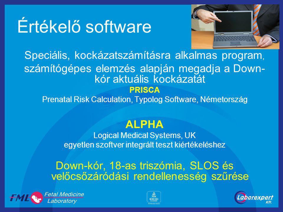 Értékelő software Speciális, kockázatszámításra alkalmas program,