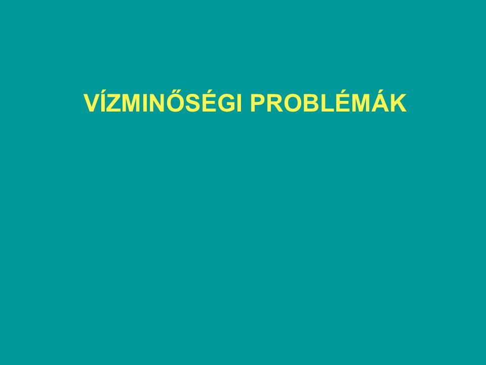 VÍZMINŐSÉGI PROBLÉMÁK