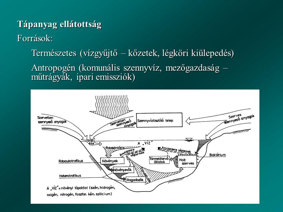 Tápanyag ellátottság Források: Természetes (vízgyűjtő – kőzetek, légköri kiülepedés)