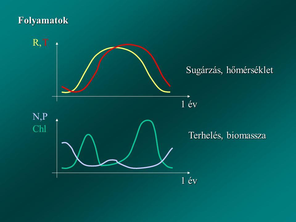 Folyamatok R, T 1 év N,P Chl Sugárzás, hőmérséklet Terhelés, biomassza