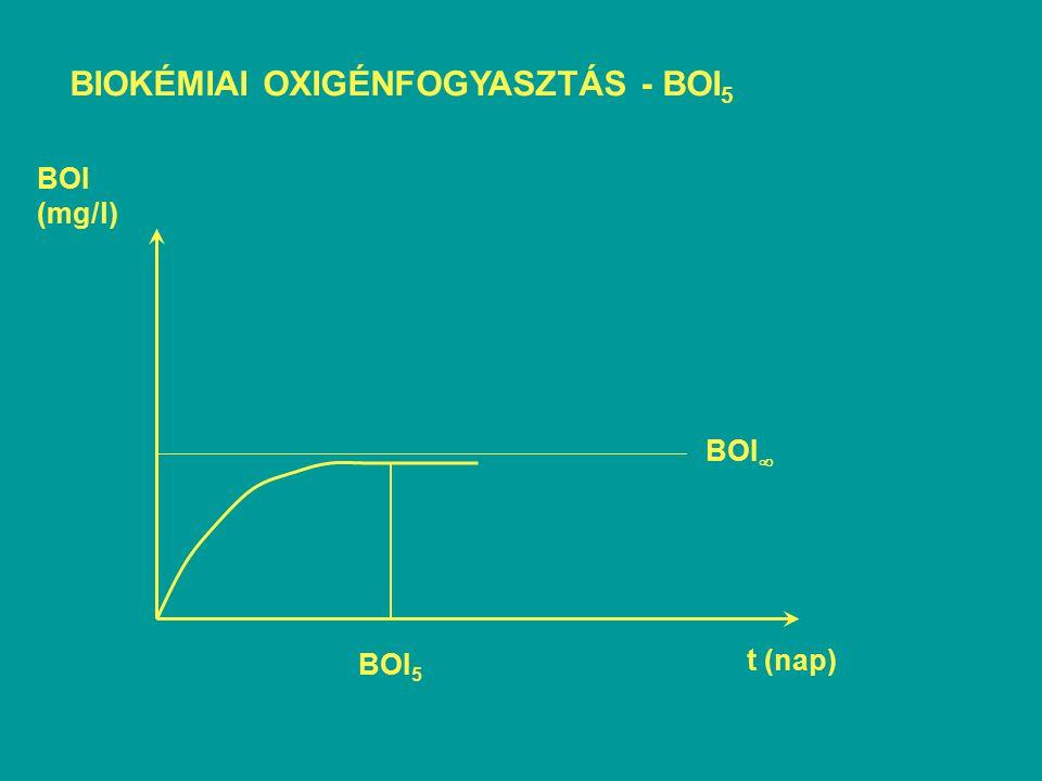 BIOKÉMIAI OXIGÉNFOGYASZTÁS - BOI5
