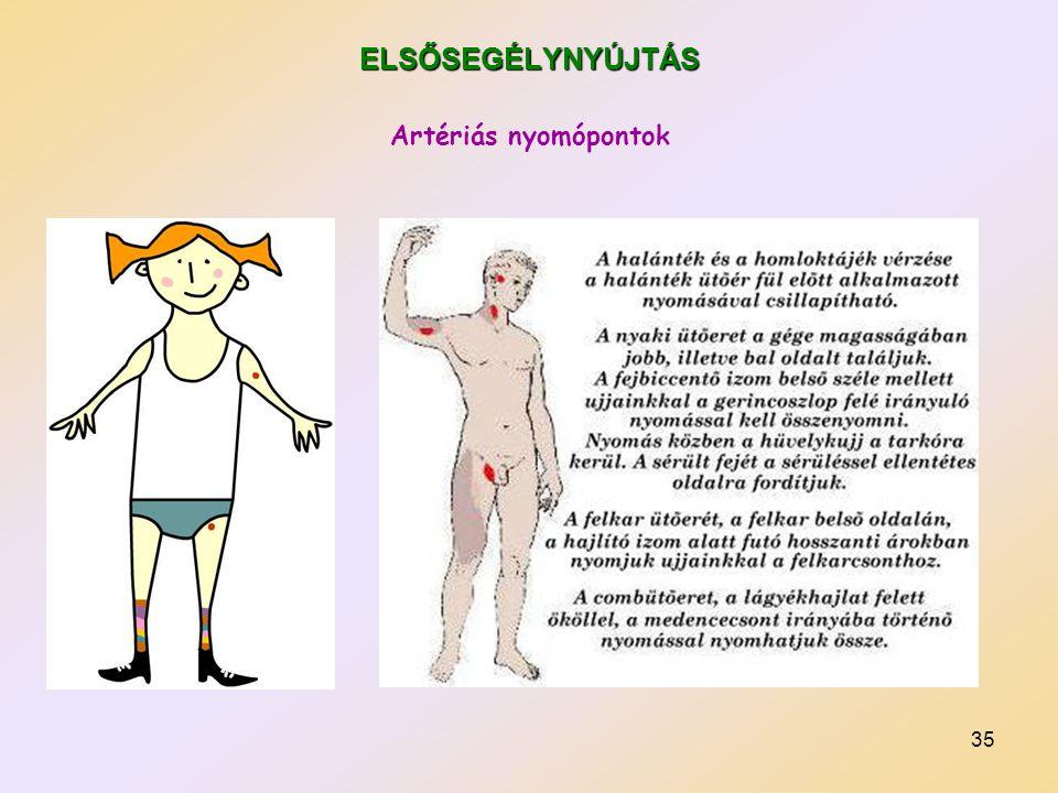 ELSŐSEGÉLYNYÚJTÁS Artériás nyomópontok
