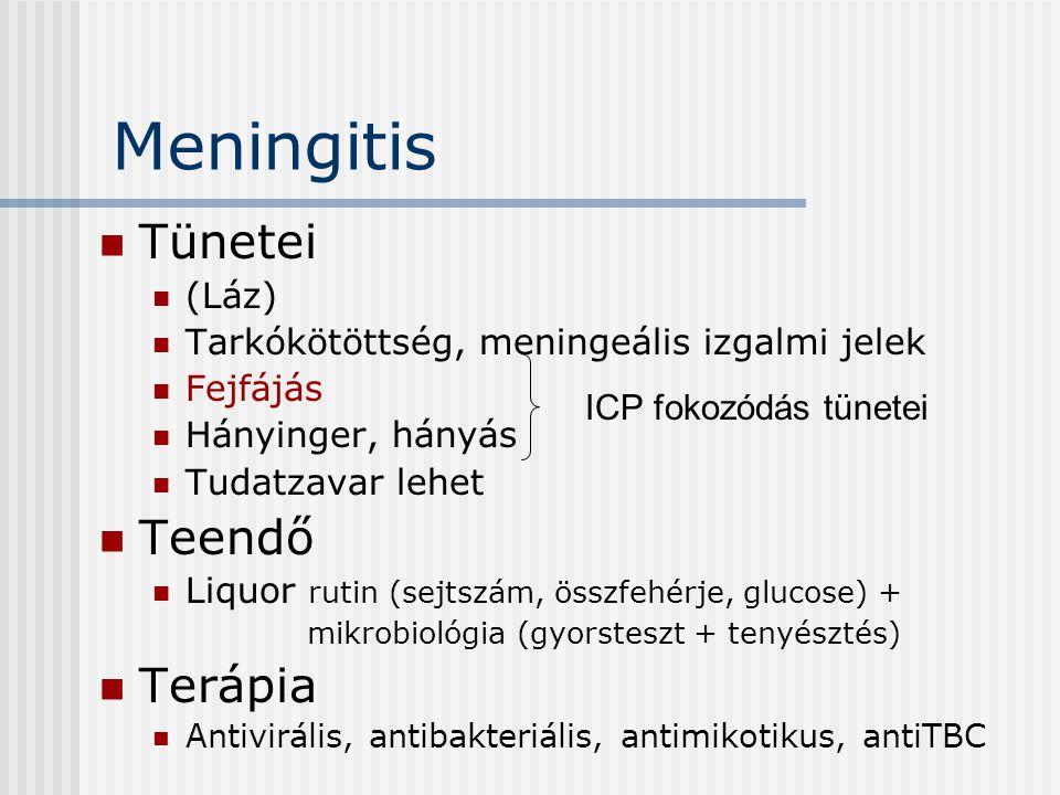 Meningitis Tünetei Teendő Terápia (Láz)