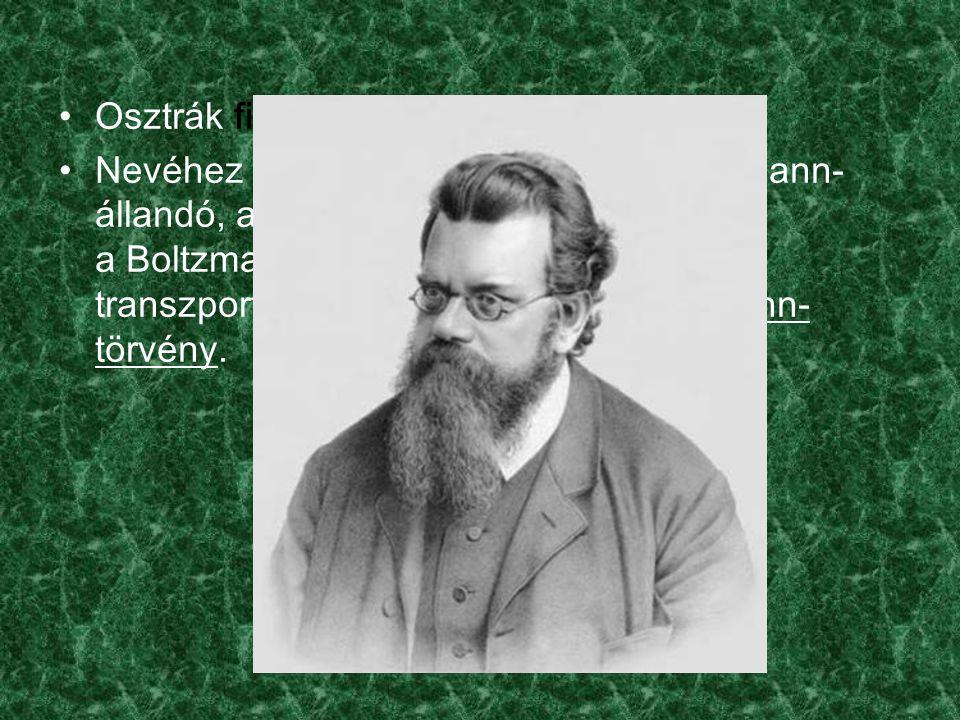Osztrák fizikus és filozófus.