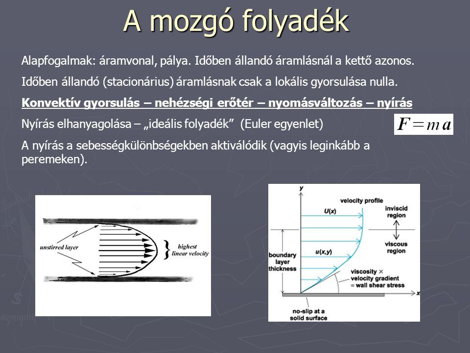 A mozgó folyadék Alapfogalmak: áramvonal, pálya. Időben állandó áramlásnál a kettő azonos.