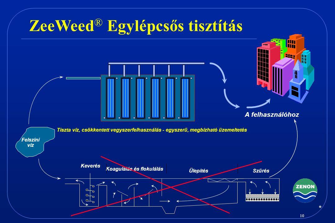 ZeeWeed® Egylépcsős tisztítás