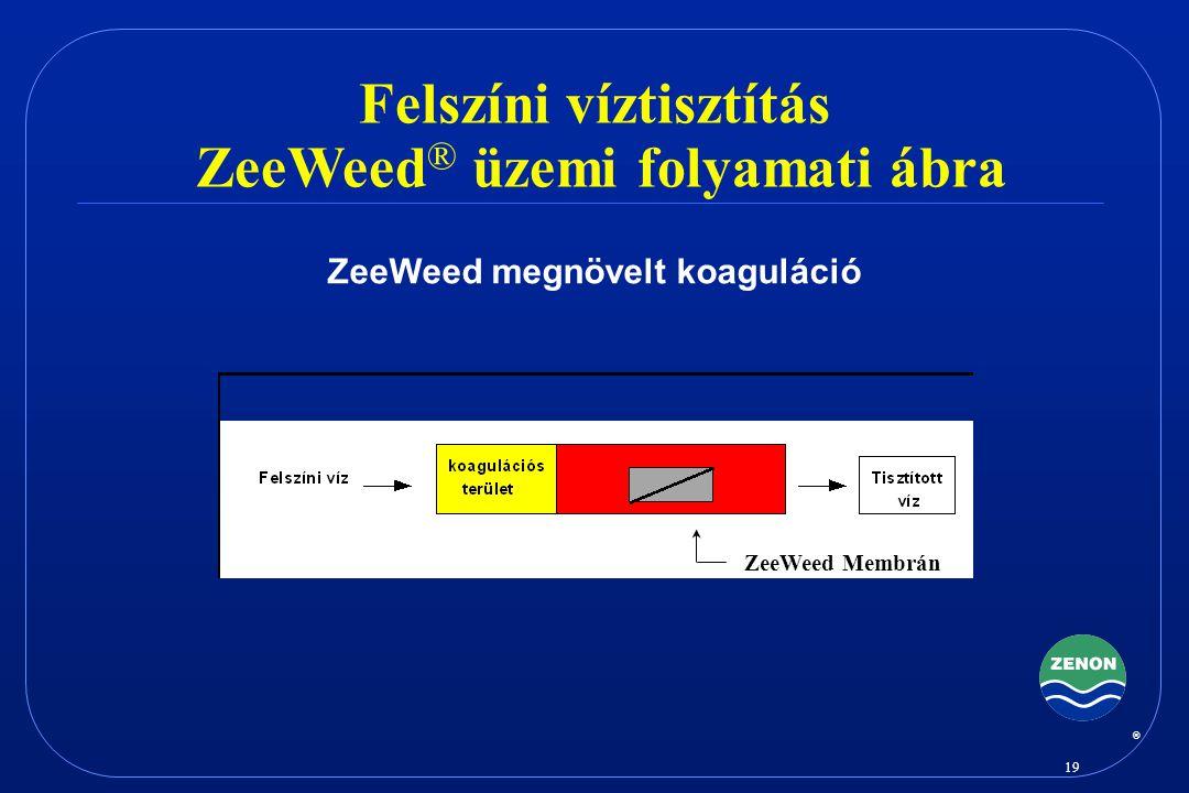 Felszíni víztisztítás ZeeWeed® üzemi folyamati ábra