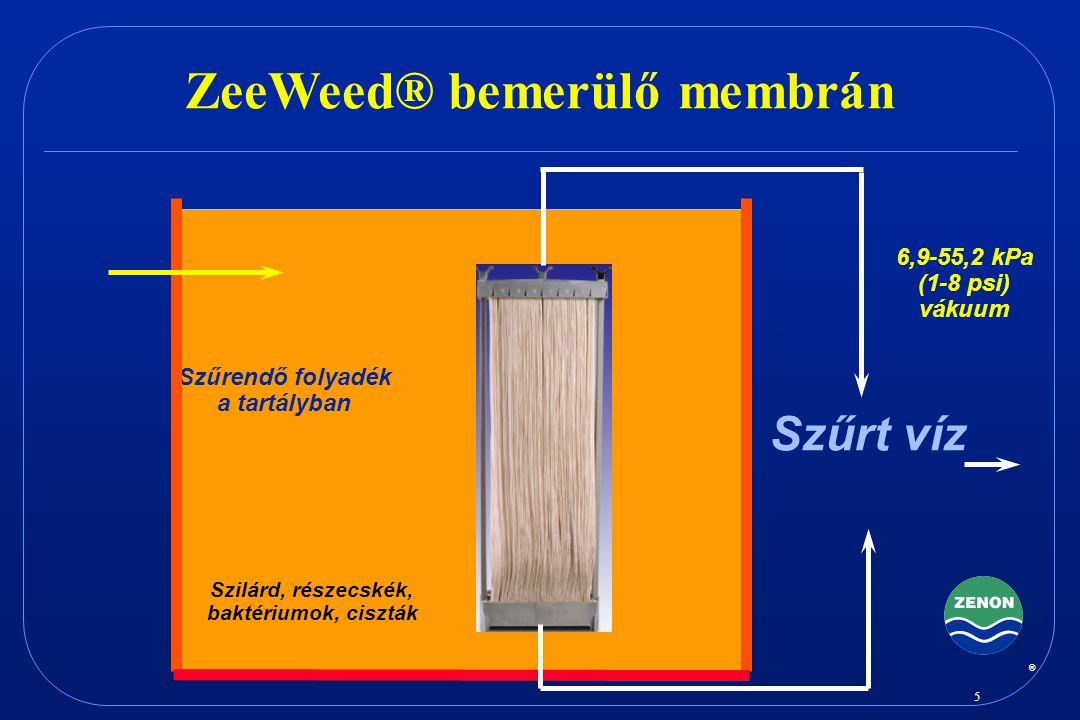 ZeeWeed® bemerülő membrán