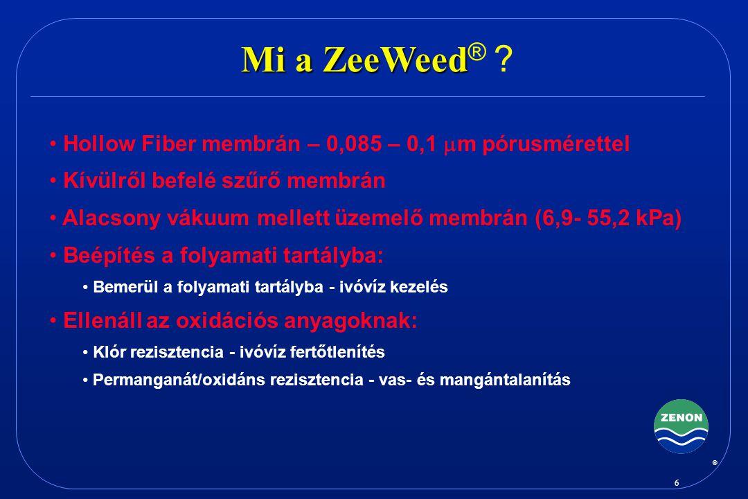 Mi a ZeeWeed® Hollow Fiber membrán – 0,085 – 0,1 mm pórusmérettel