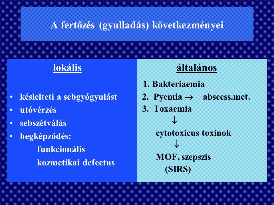 A fertőzés (gyulladás) következményei
