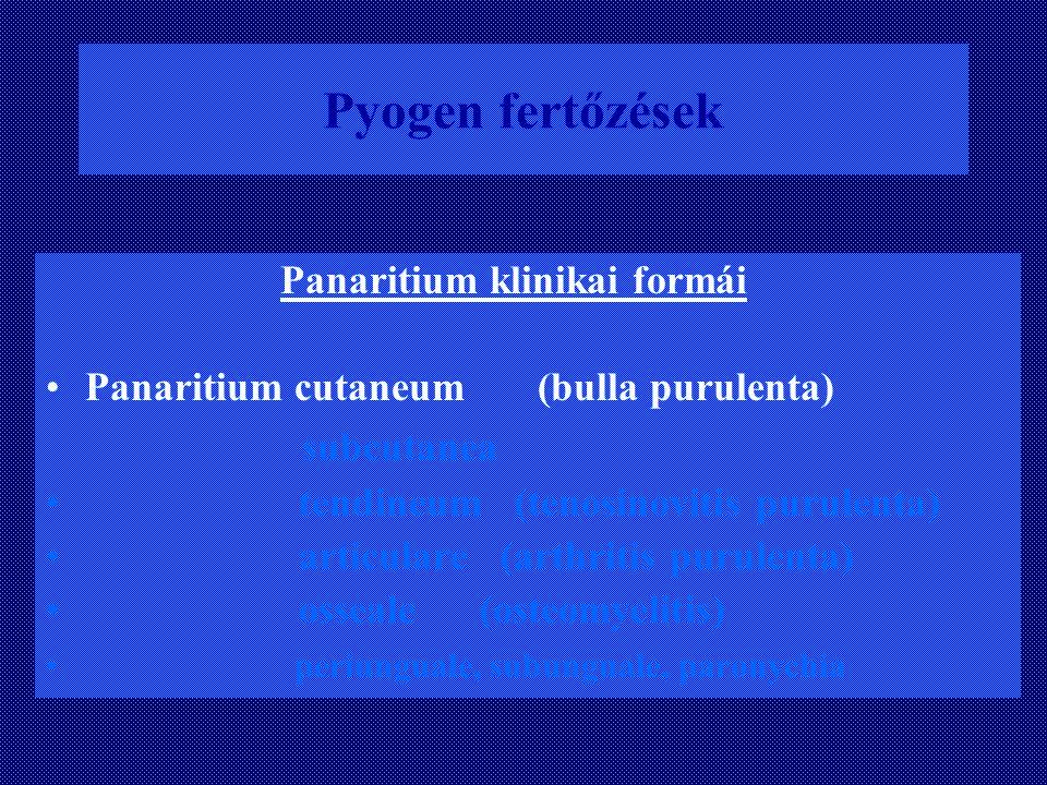 Pyogen fertőzések subcutanea Panaritium klinikai formái