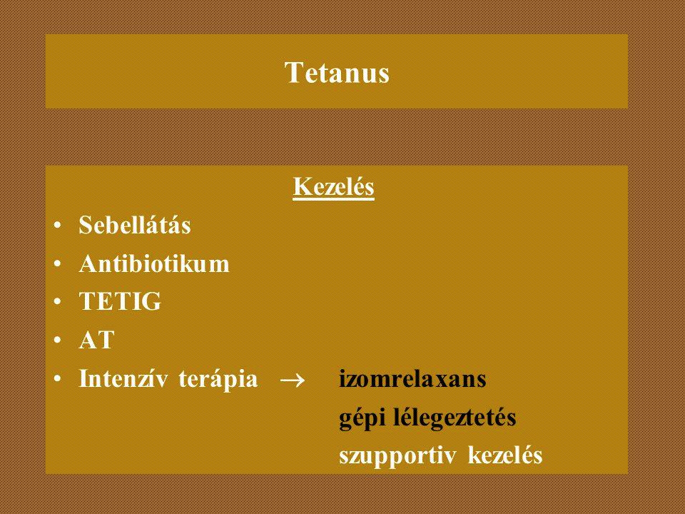 Tetanus Kezelés Sebellátás Antibiotikum TETIG AT