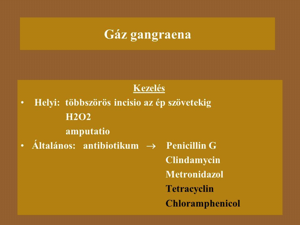 Gáz gangraena Kezelés Helyi: többszörös incisio az ép szövetekig H2O2