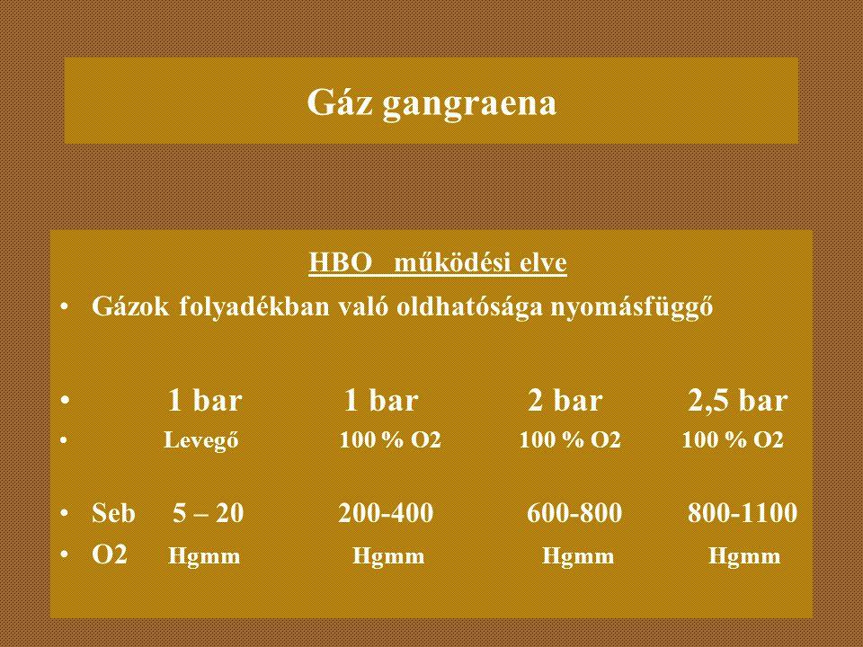 Gáz gangraena HBO működési elve 1 bar 1 bar 2 bar 2,5 bar