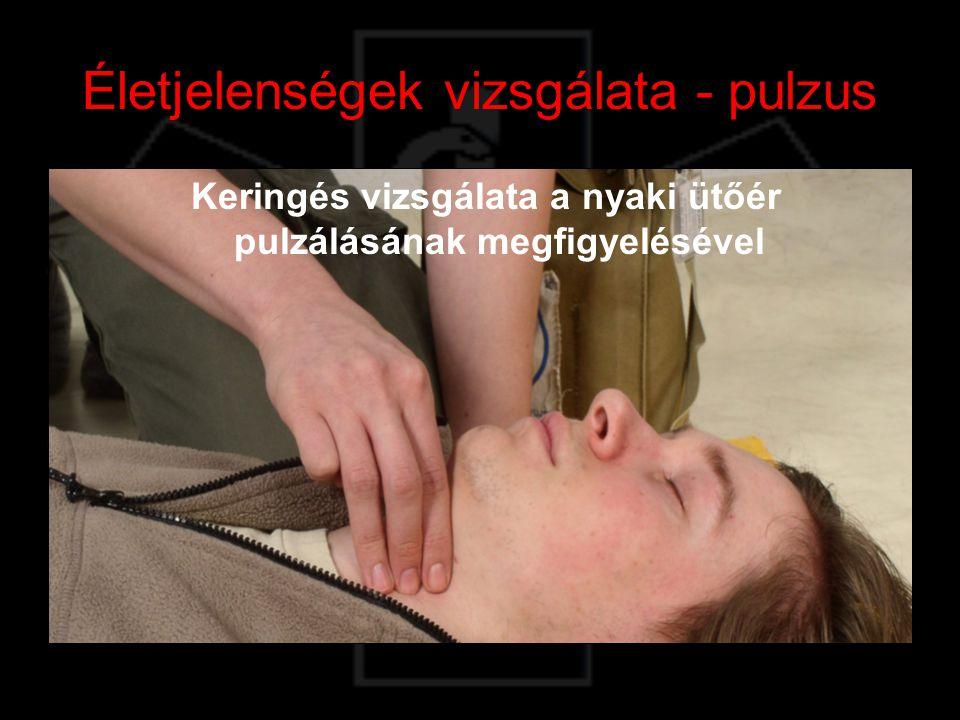 Életjelenségek vizsgálata - pulzus