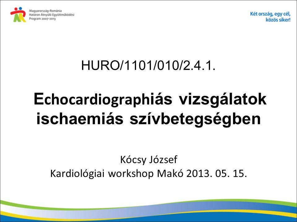 Kócsy József Kardiológiai workshop Makó 2013. 05. 15.
