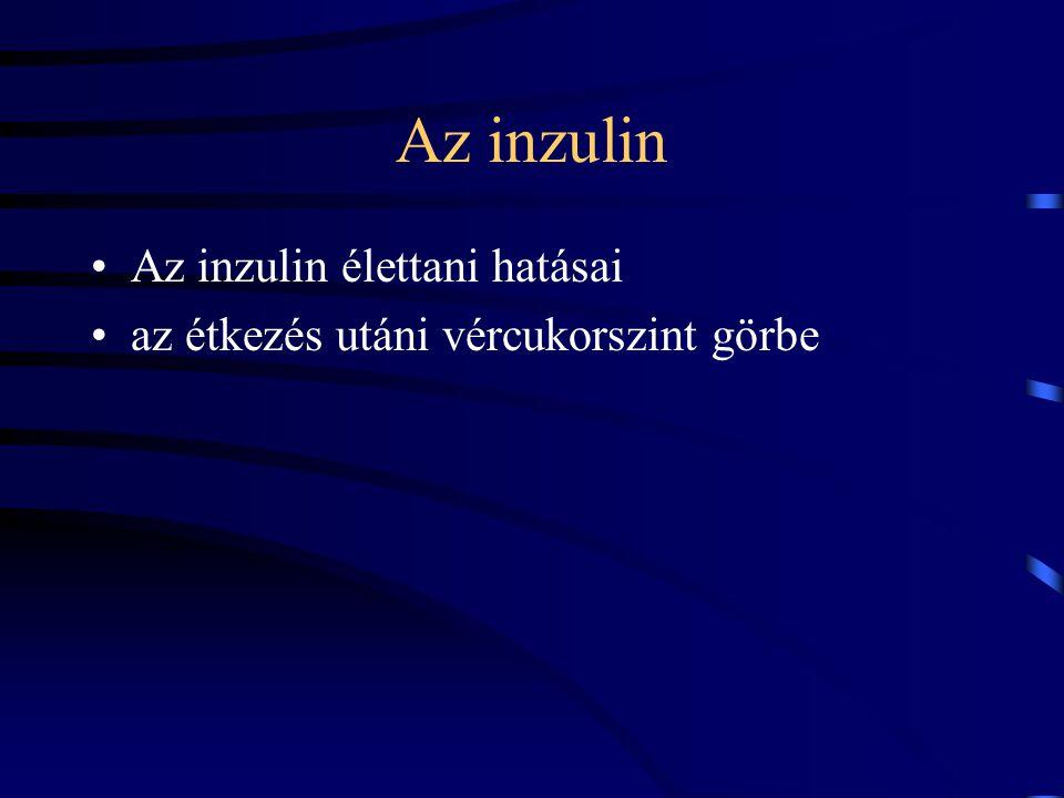 Az inzulin Az inzulin élettani hatásai