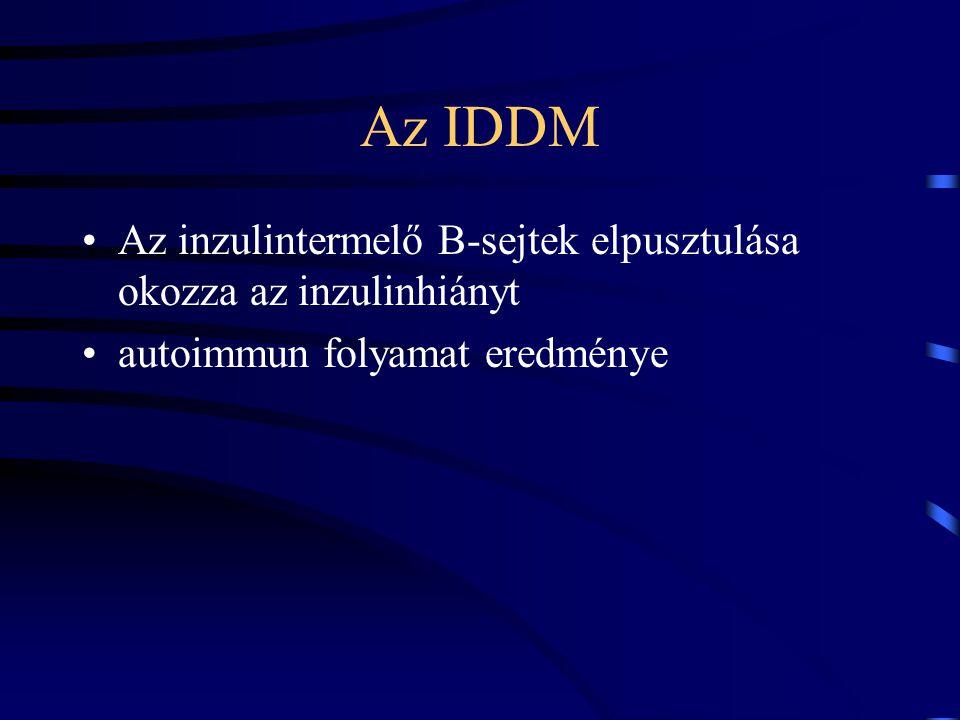 Az IDDM Az inzulintermelő B-sejtek elpusztulása okozza az inzulinhiányt.