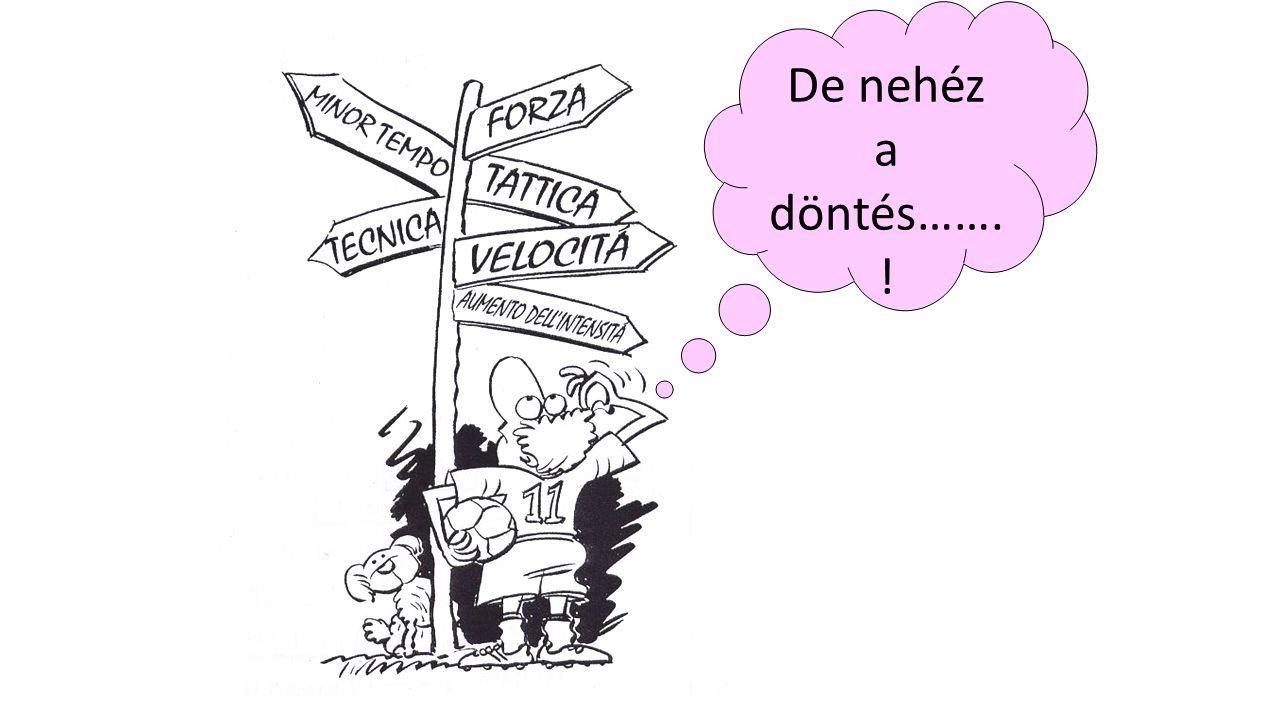 De nehéz a döntés…….!