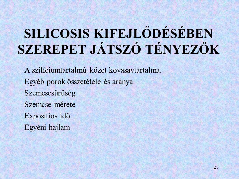 SILICOSIS KIFEJLŐDÉSÉBEN SZEREPET JÁTSZÓ TÉNYEZŐK