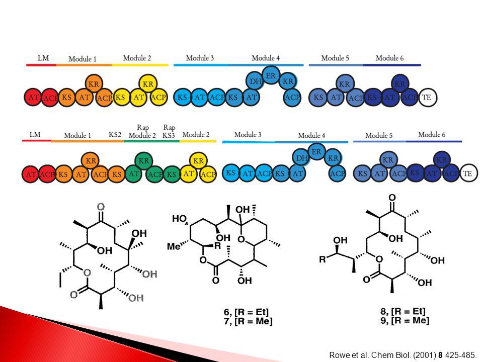 Rowe et al. Chem Biol. (2001) 8 425-485.