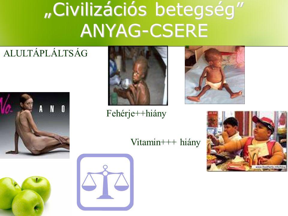 """""""Civilizációs betegség ANYAG-CSERE"""