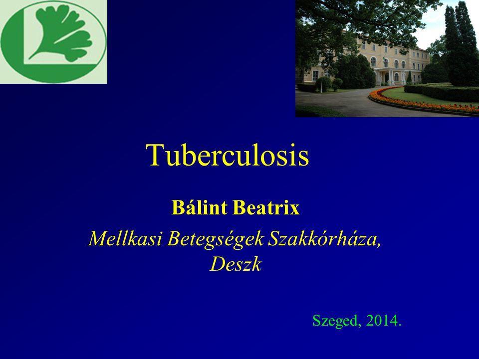 Bálint Beatrix Mellkasi Betegségek Szakkórháza, Deszk