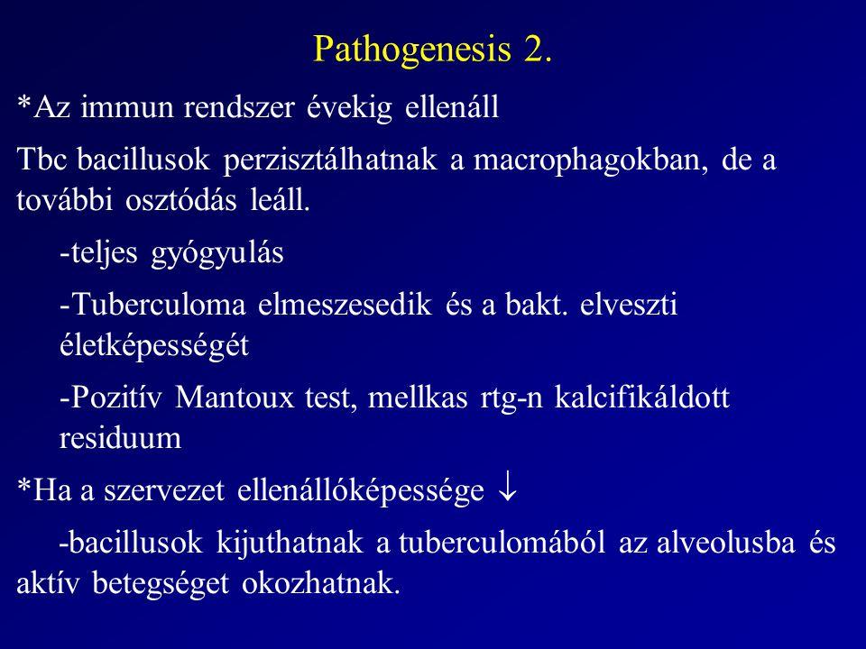 Pathogenesis 2. *Az immun rendszer évekig ellenáll