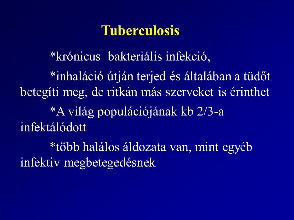 Tuberculosis *krónicus bakteriális infekció,