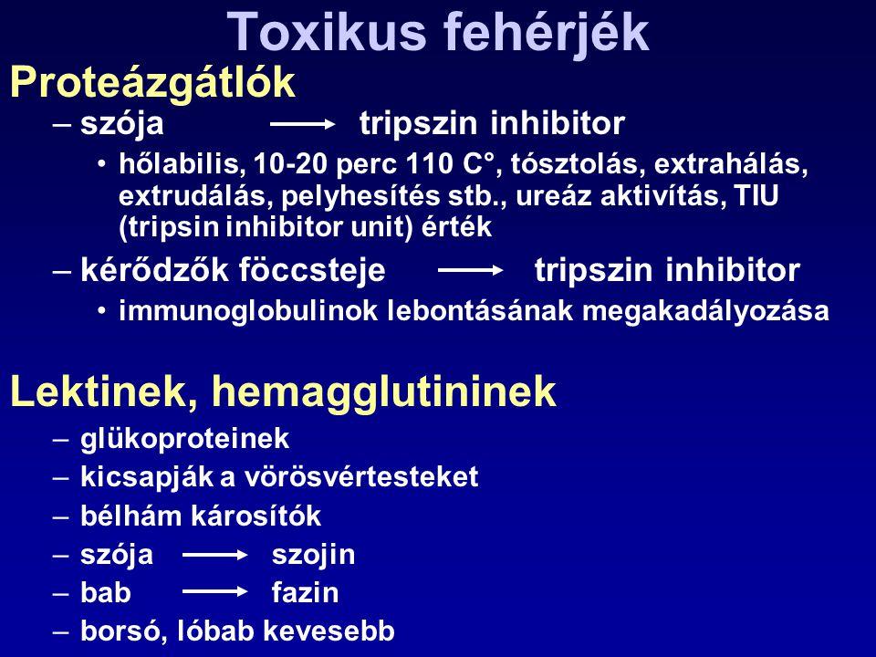 Toxikus fehérjék Proteázgátlók Lektinek, hemagglutininek