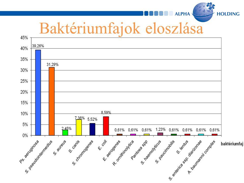 Baktériumfajok eloszlása