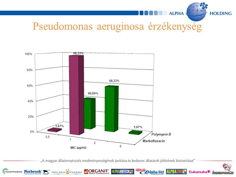 Pseudomonas aeruginosa érzékenység