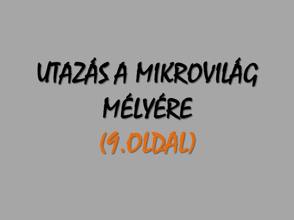 UTAZÁS A MIKROVILÁG MÉLYÉRE