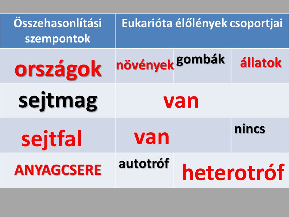 Összehasonlítási szempontok Eukarióta élőlények csoportjai