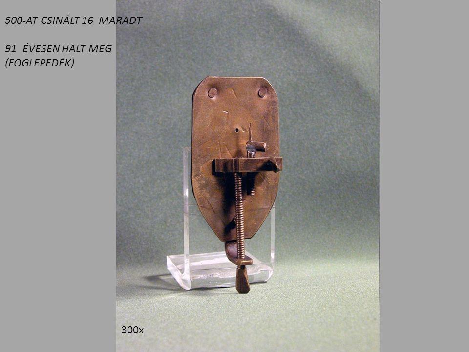 500-AT CSINÁLT 16 MARADT ÉVESEN HALT MEG (FOGLEPEDÉK) 300x