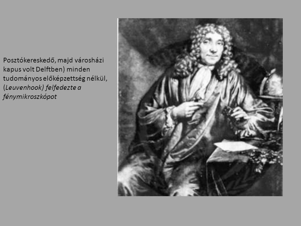 Posztókereskedő, majd városházi kapus volt Delftben) minden tudományos előképzettség nélkül, (Leuvenhook) felfedezte a fénymikroszkópot