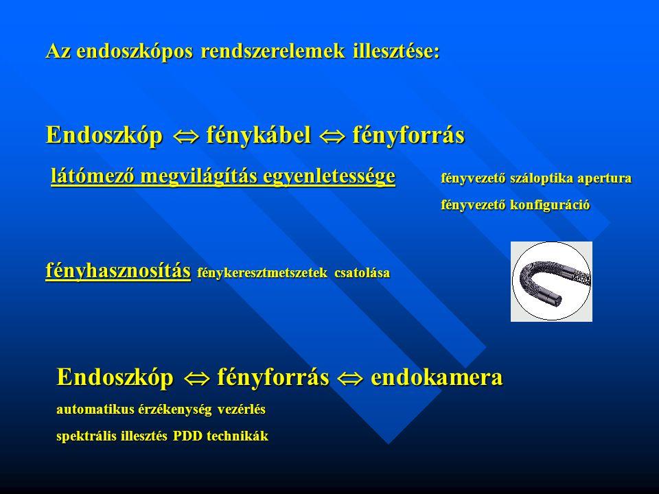 Endoszkóp  fénykábel  fényforrás
